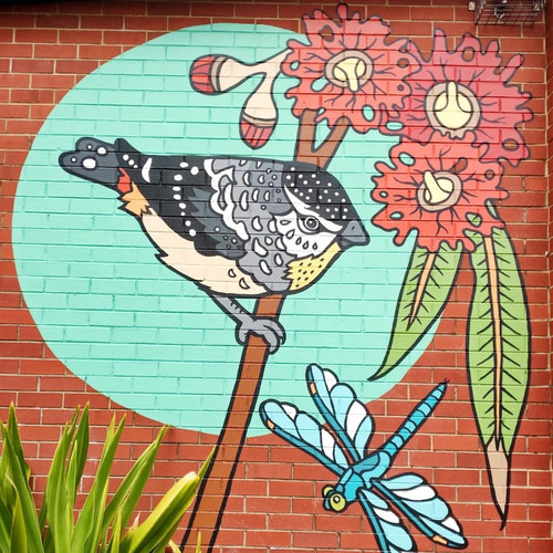Spotted Pardalote and Flowering Gums