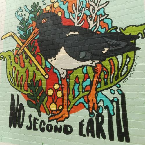 No Second Earth