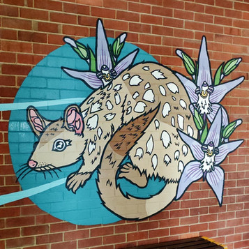 Western Spotted Quoll and Pink Fairy Orchids