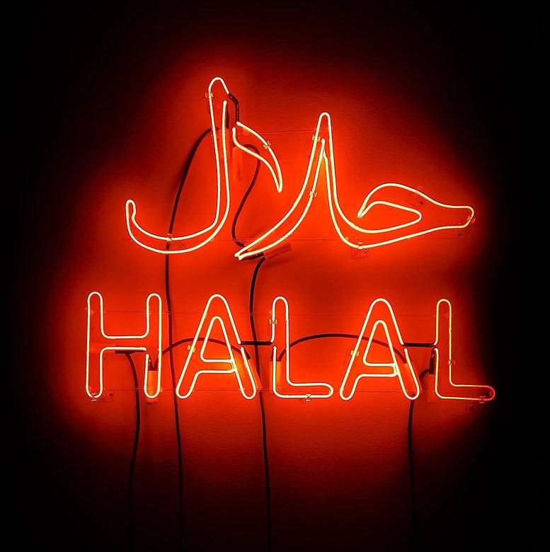 Neon Sign Art, Halal, Installation, Raheleh Filsoofi