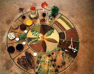Medicine Wheel of Food.jpg