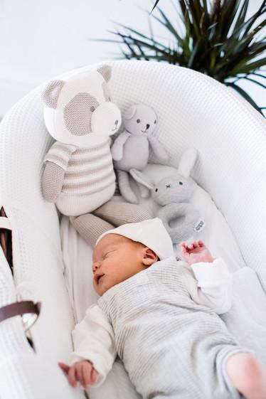 Newborn baby Roman