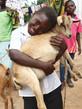 Ziegen für bedürftige Familien