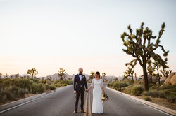 Joshua Tree Mini Wedding