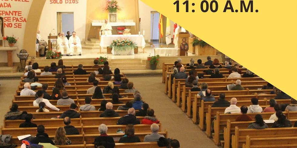Misa Domingo 16 de Mayo - 11:00 A.M