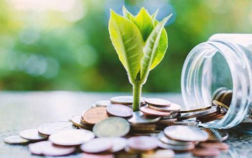 El futuro de las Inversiones Sostenibles