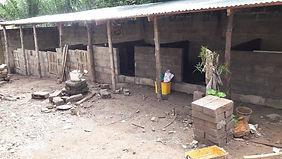 porcherie en construction