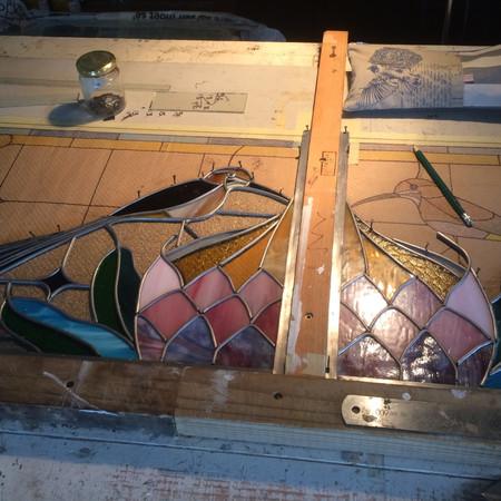 Sugarbirds & Protea in production