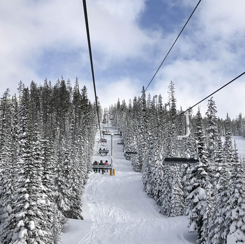 Ski the Northeast