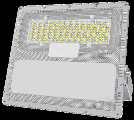 Solar Flood Light Set: L