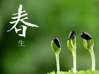 TAVASZI ÉTKEZÉS - a kínai orvoslás szerint