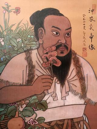 Méz a kínai orvoslásban