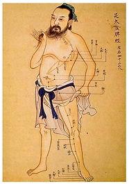 Akupunktúra, meridiánok