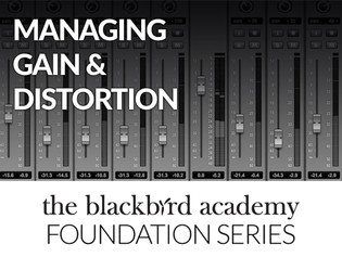 The Blackbird Foundation Series: Managing Gain and Distortion