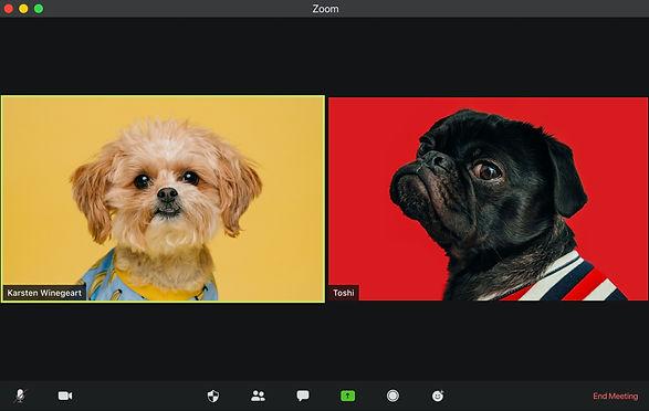visuals-sW_BS0OVgv0-unsplash_edited.jpg