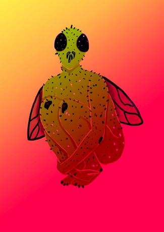 Fly Creep