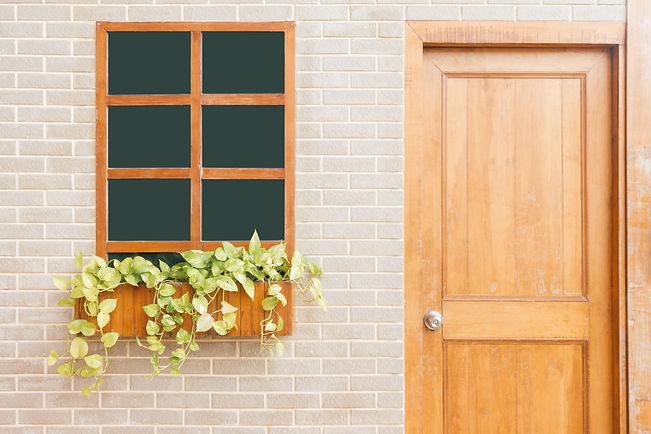 door2-wood-door-with-plant.jpg