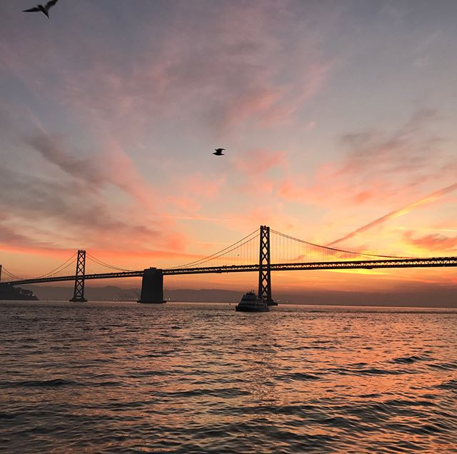 A Love Letter to San Francisco