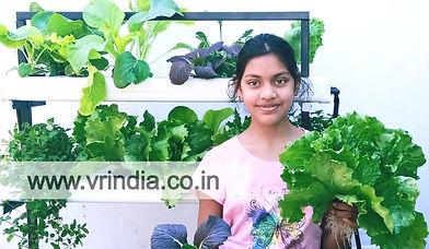 small hydroponics system _edited.jpg