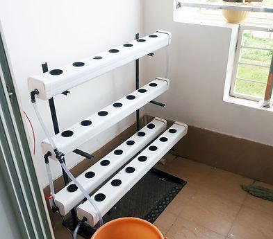 Small hydroponics System.jpg