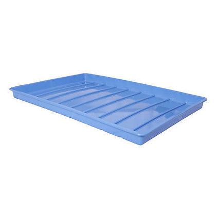 Hydroponic Fodder Trays