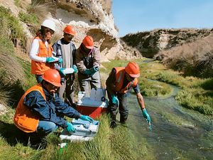 Chubut: Entidades científicas especializadas responden al informe de la Mesa Técnica Cenpat