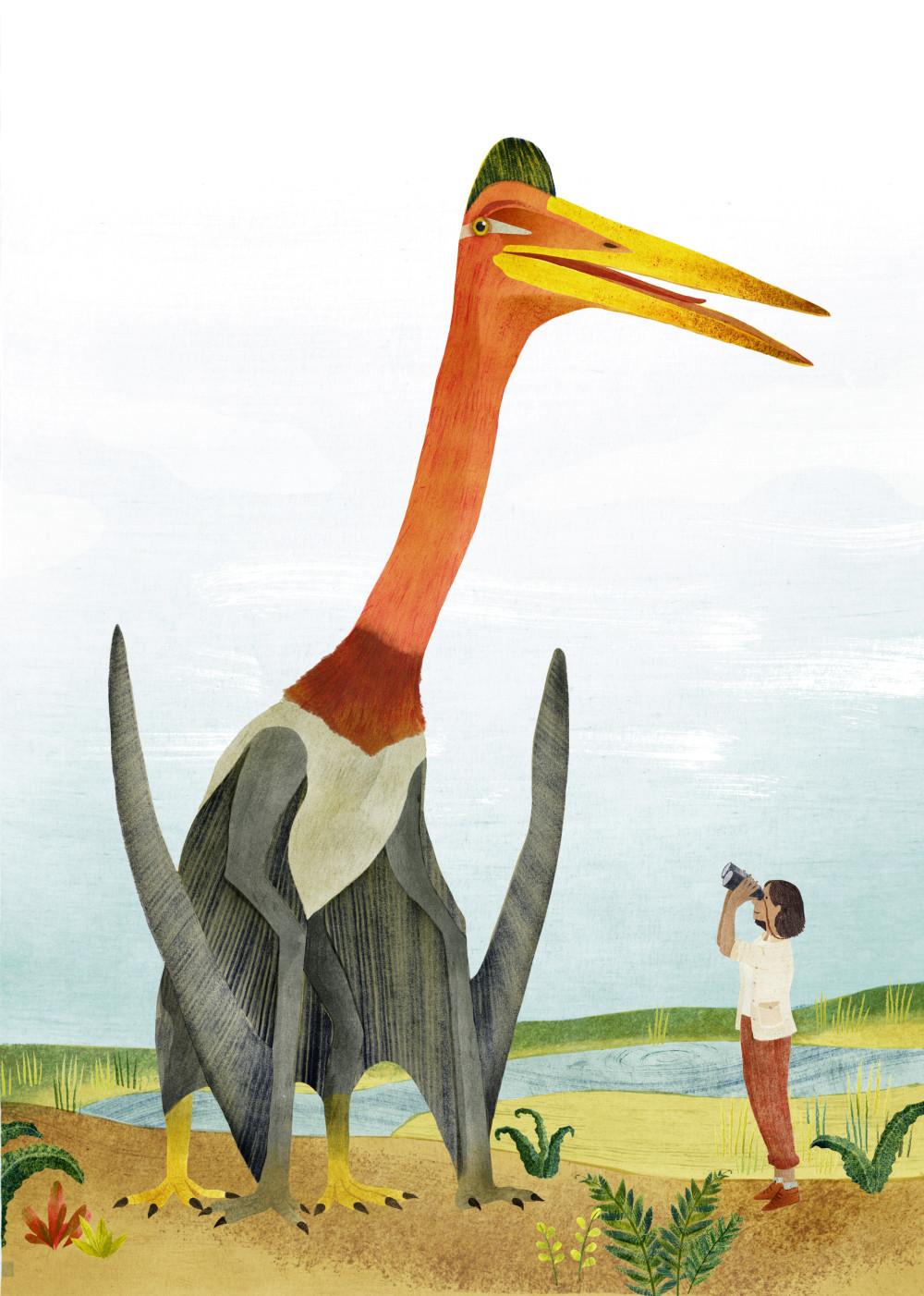 Pterodactyloidae, vogel, de walvis begon aan wal, evolutie, tekening