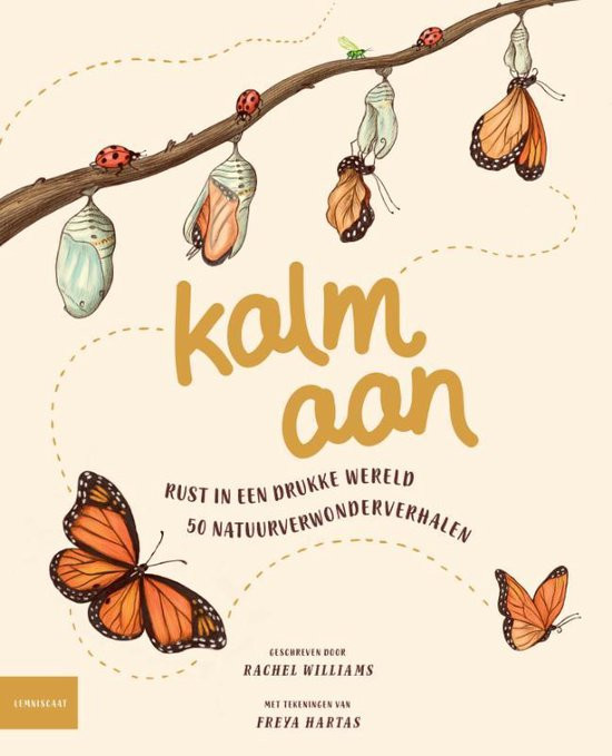 Kalm aan, cover, Rachel Williams, rust, 50 verhalen, lemniscaat