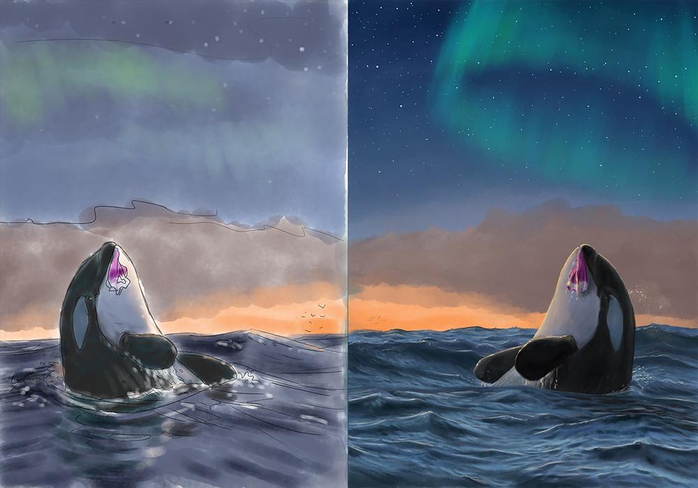 pagina, saga, de orka die geen haring lustte, Leonard Boekee, informatieboek, prentenboek, verhaal