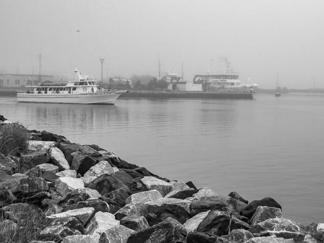 foggy Roosevelt Inlet