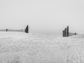 dune fence and fog