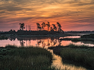 sunrise at Chincoteague