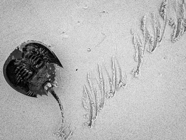 sand etching