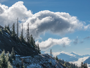 Hurricane Ridge in the clouds