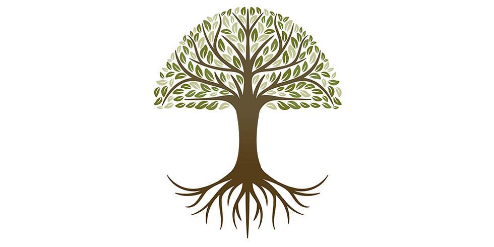 Anadolu Şirketleri İçin Kendini Dar Ağacından Kurtarma