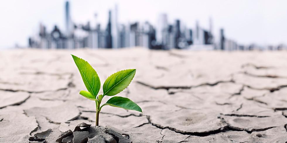 Resilience: Yöneticiler için Yönetimsel Travmalar Sonrası Toparlanma Süreci