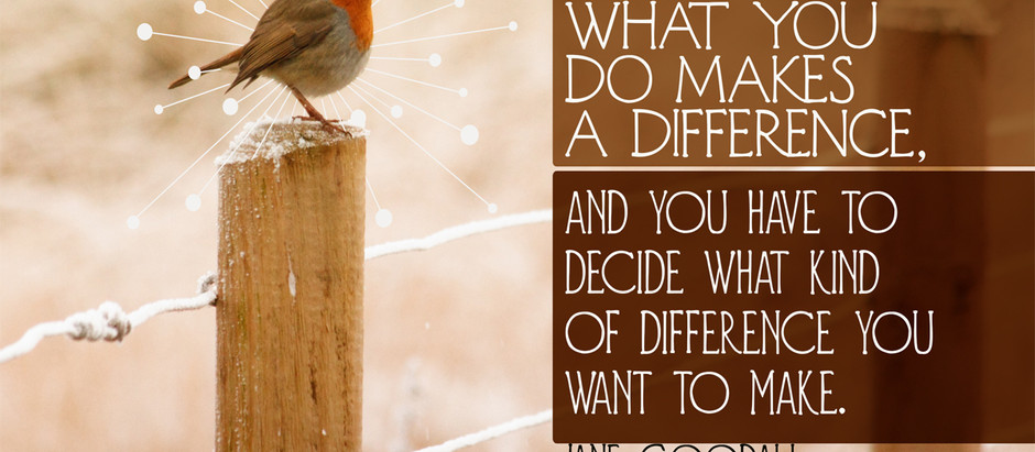The Difference You Make