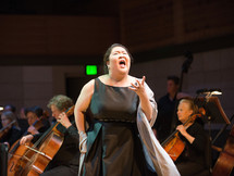 Schwabacher Summer Concert 2017 - Kristen Loken Photography
