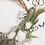 Thumbnail: Handwoven Vine Wreath