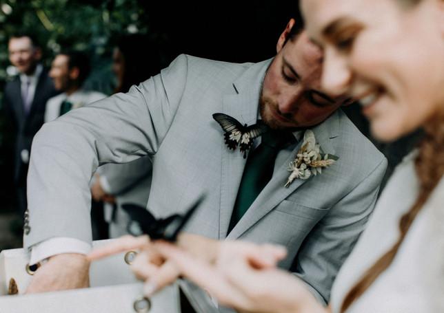 bride-groom-butterflies
