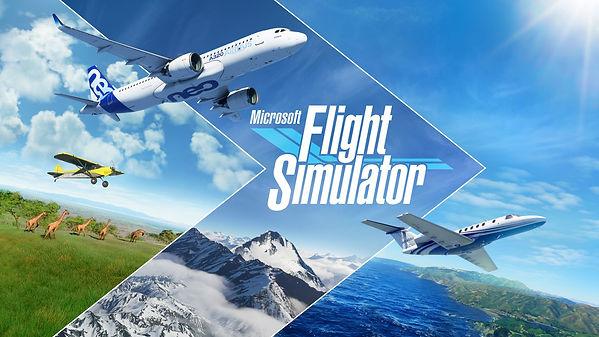 Livrée personnalisée Microsoft Flight Simulator 2020