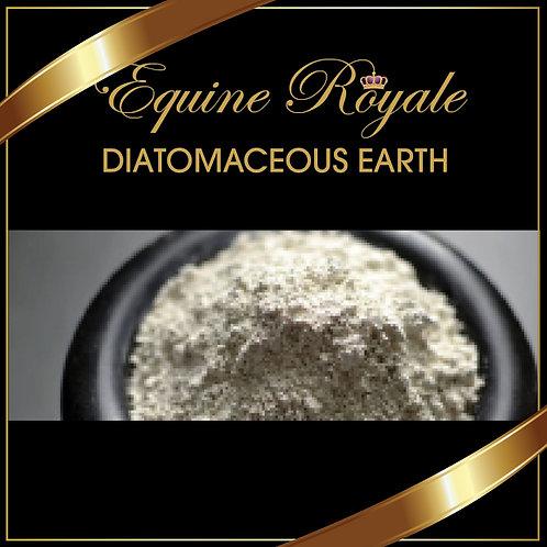 DIATOMACEOUS EARTH 900gm