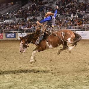 BOX ELDER COUNTY FAIR - Golden Spike Rodeo: Wednesday & Thursday, August 26-27