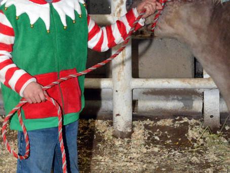 "COMMUNITY – ""Classic Christmas showmanship"""