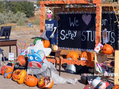 "COMMUNITY - ""Take a walk along the pumpkin trail"""