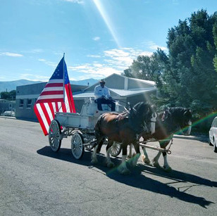 """FEATURE - """"Patriotism and country life on parade"""""""