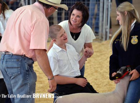 """NEWS - """"2020 Box Elder Jr. Livestock: Junior Market Lamb results"""""""
