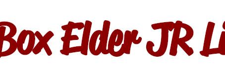 "COMMUNITY - ""Box Elder Jr. Livestock shows livestreaming this year"""