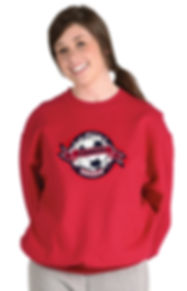 Breakout Shirt Sample.jpg