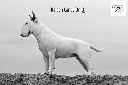 Raiden Candy On Q